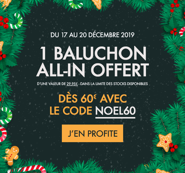 Sac baluchon All-In