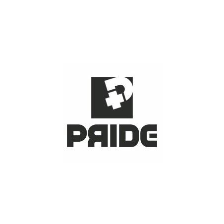 Pride Bodyboard